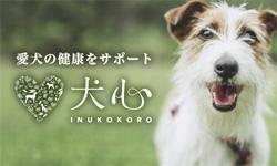 犬心公式サイト